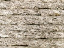 Macro textuur - hout - korrel royalty-vrije stock foto's