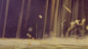 Macro tir de blé de meulage de meule banque de vidéos