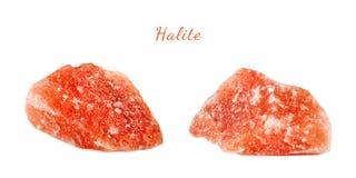 Macro tir de pierre gemme naturelle Halite minéral cru, Pakistan Objet d'isolement sur un fond blanc photos stock