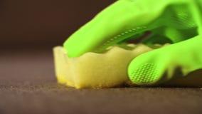 Macro tir de sofa de nettoyage avec l'éponge banque de vidéos