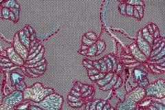 Macro tir du matériel rouge et blanc de texture de dentelle Photos stock