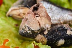 Macro tir Morceaux d'iwashi de sardine sur des feuilles de laitue photographie stock libre de droits