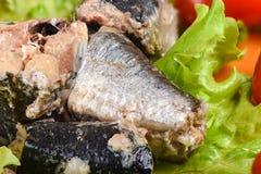 Macro tir Morceaux d'iwashi de sardine sur des feuilles de laitue photos stock