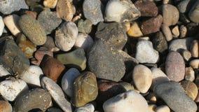 Macro tir statique de caillou multi de couleur en littoral, soleil banque de vidéos