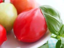 Macro tomato Stock Image