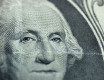 Macro van één dollar royalty-vrije stock fotografie