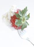 Macro van aardbei die in slagroom wordt ondergedompeld Stock Foto