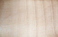 Macro van backlit bruine textuur Stock Afbeelding