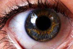 Macro van de mooie ogen van een vrouw Stock Foto