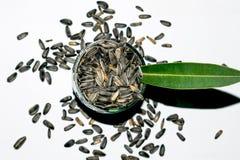 Macro van de zaden dat van de zonbloem wordt geschoten royalty-vrije stock afbeeldingen