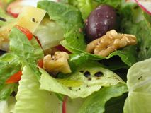 Macro van een gezonde salade Stock Afbeelding
