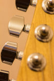 Macro van gitaar stemmende pinnen Stock Fotografie