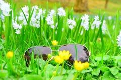 Macro van glazen in witte bloemen wordt geschoten die stock afbeelding