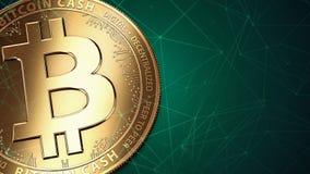 Macro van gouden Bitcoin-Contant geld BCH/BCC en exemplaarruimte die wordt geschoten Royalty-vrije Stock Afbeelding