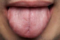 Macro van menselijke tong stock foto's
