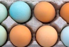 Macro van Multi-Colored Organische Eieren Stock Foto
