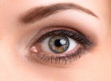 Macro van vrouwelijk oog stock foto