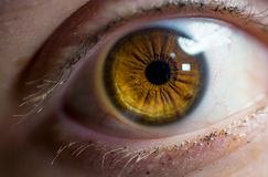 Macro vicina su di un occhio femminile Fotografie Stock Libere da Diritti