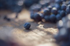Macro view of blue grapes on wine barrel royalty free stock image
