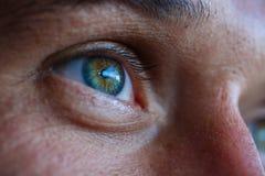 Macro view of an eye Stock Image