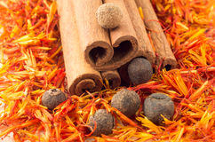 Macro view of the kitchen spices Stock Photography