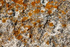 Macro view of natural rock as background royalty free stock photography