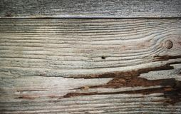 Old gray wooden wall, background photo texture royalty free stock images