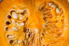 Macro view. Pulp and seeds of orange pumpkin Stock Images