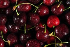 Macro view of Red Cherries. Red cherries in macro view with water droplets royalty free stock image