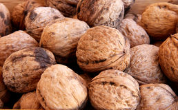 Macro view of walnut Royalty Free Stock Photography