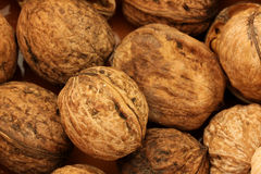Macro view of walnut Royalty Free Stock Photo