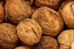 Macro view of walnut Royalty Free Stock Photo