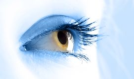 Macro view of a young women eye Stock Photo