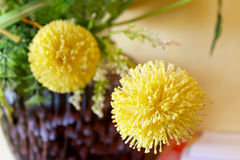 Macro vista del fiore giallo Immagini Stock Libere da Diritti