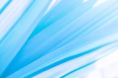 Macro vista di struttura della foglia nel tono blu per fondo astratto immagini stock libere da diritti