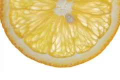 Macro voedselinzameling - Oranje plak Royalty-vrije Stock Afbeelding