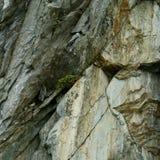 Macro vue des pierres Photographie stock libre de droits