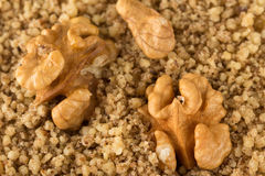 Macro of organic kernel walnut , ground and whole Stock Image