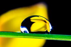 Macro of water drop on green leaf Stock Photo