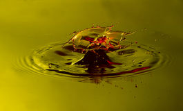 Macro water splash. Water drop collision with green and yellow background Stock Photo