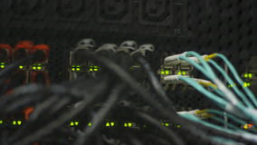 Macro web server with network cables lights and numbers. Macro view of steel IT web-server room with colorful network cables flashing lights and numbers stock footage