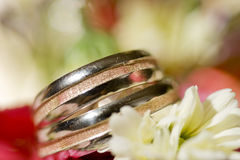 macro wedding rings Royalty Free Stock Image