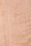 Macro of Wood Veneer Royalty Free Stock Photos