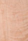 Macro of Wood Veneer Royalty Free Stock Photos