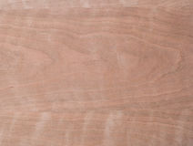 Macro of Wood Veneer Royalty Free Stock Photo