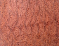 Macro of Wood Veneer Royalty Free Stock Image