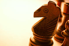 Macro Wooden Horse Chess Piece Royalty Free Stock Photography
