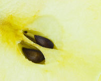 Macro yellow half of an apple with two brown seeds Royalty Free Stock Photography