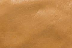 Macro of yellow leather Stock Images