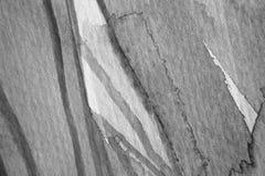 Macro Zwart-witte Waterverfdetails en Texturen Stock Fotografie